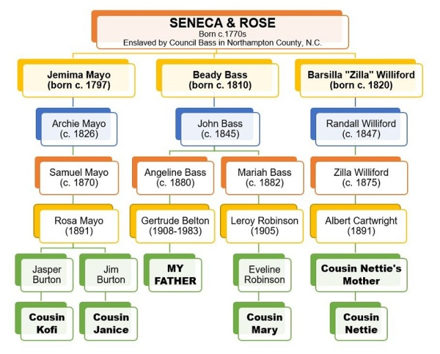 Seneca Rose DNA